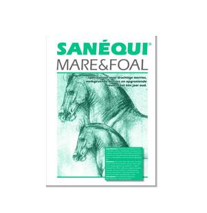 sanéqui mare&foal