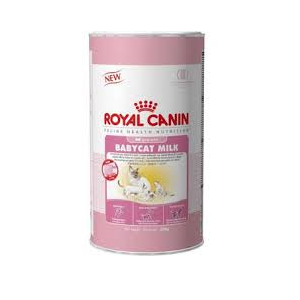royal canin babycat milk dierenarts breckpot. Black Bedroom Furniture Sets. Home Design Ideas